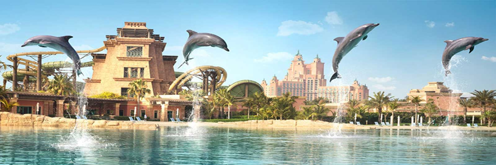 Aquaventure-Waterpark-Dolphin-Bay.jpg
