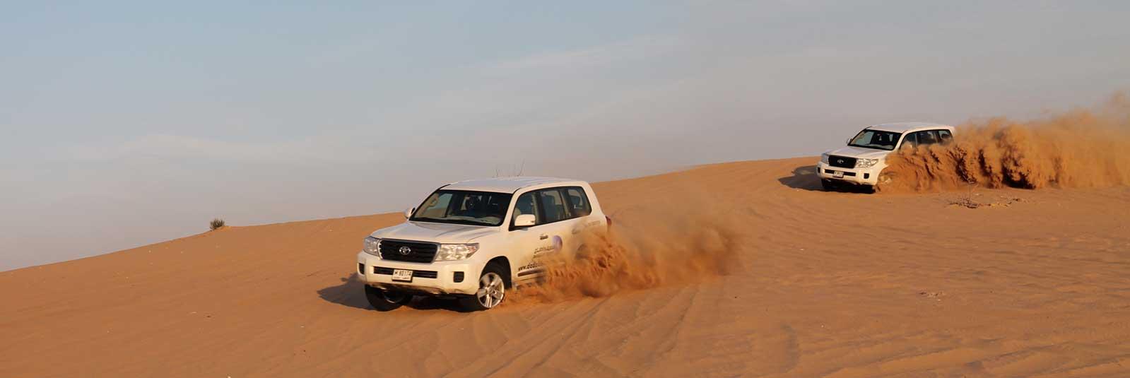 Dune-Drive-in-the-Desert.jpg