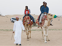 Camel Safari Adventure