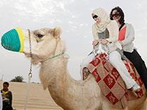 camelsafaridubai.jpg
