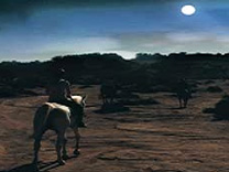 Horseback Riding - Full Moon