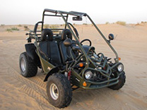 Dune buggy Desert Safari