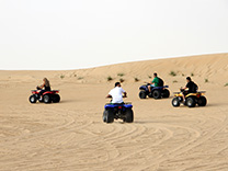 Quad Bike Safari - Evening