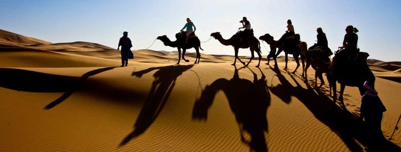 Camel desert safari tour camel ride in dubai camel safari in dubai camel desert safari tour camel ride in dubai camel safari in dubai dubai dune buggy altavistaventures Choice Image